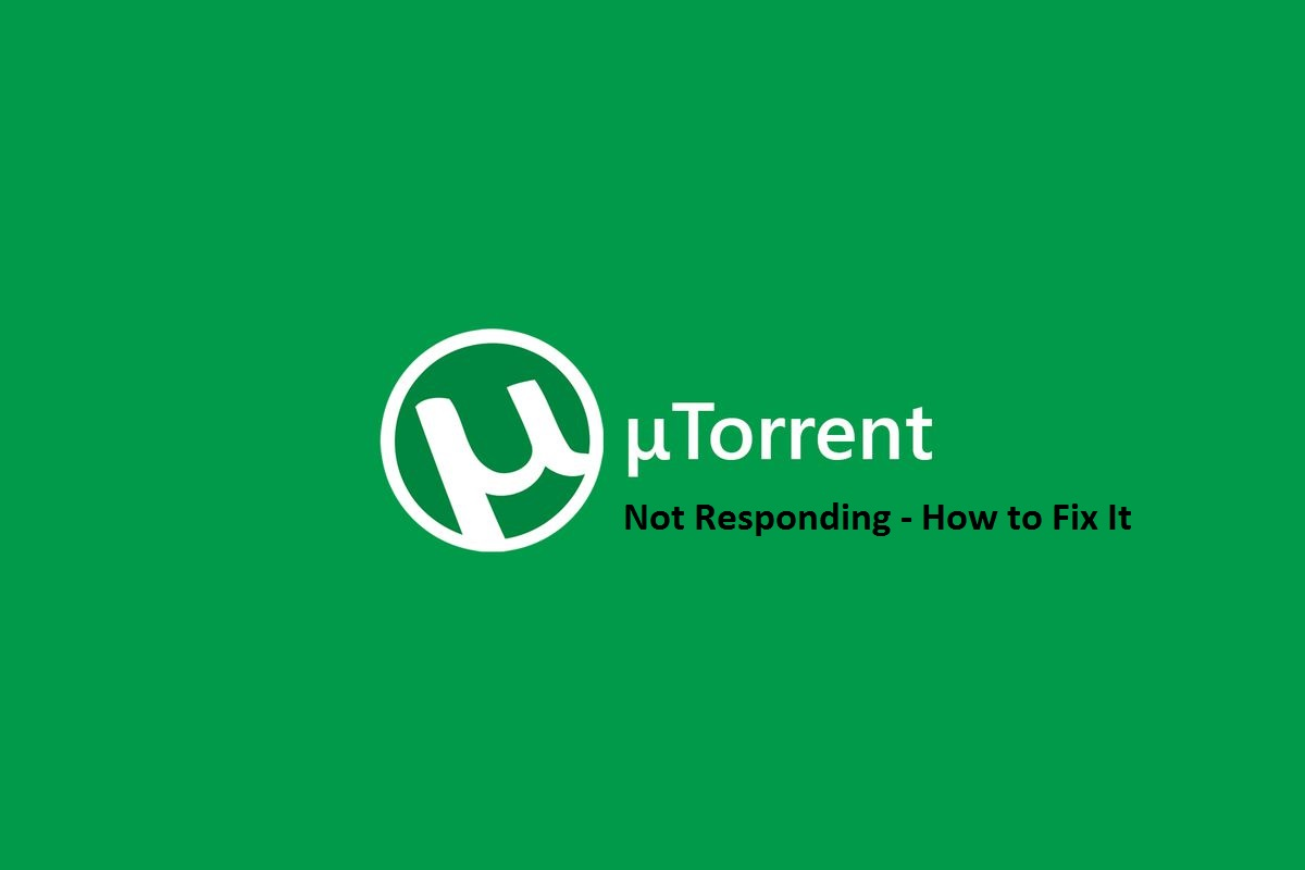 Utorrent not working