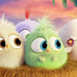 Hack angry birds