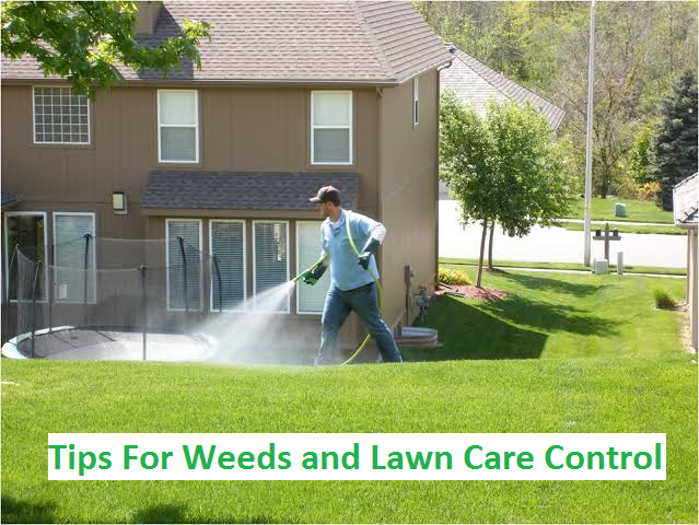 weed and lawn care control
